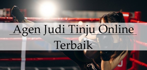 Agen Judi Tinju Online Terbaik